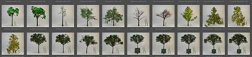 3D PLANTS ARTLANTIS